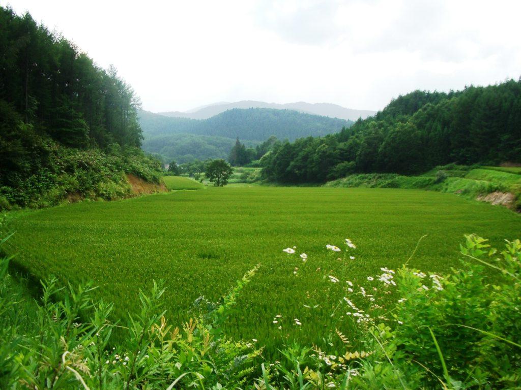 山形県最上町立小路